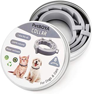 Collar for Dogs Cats Puppies, Protection Continued 8 Months, One Size Fits All (15 inch)