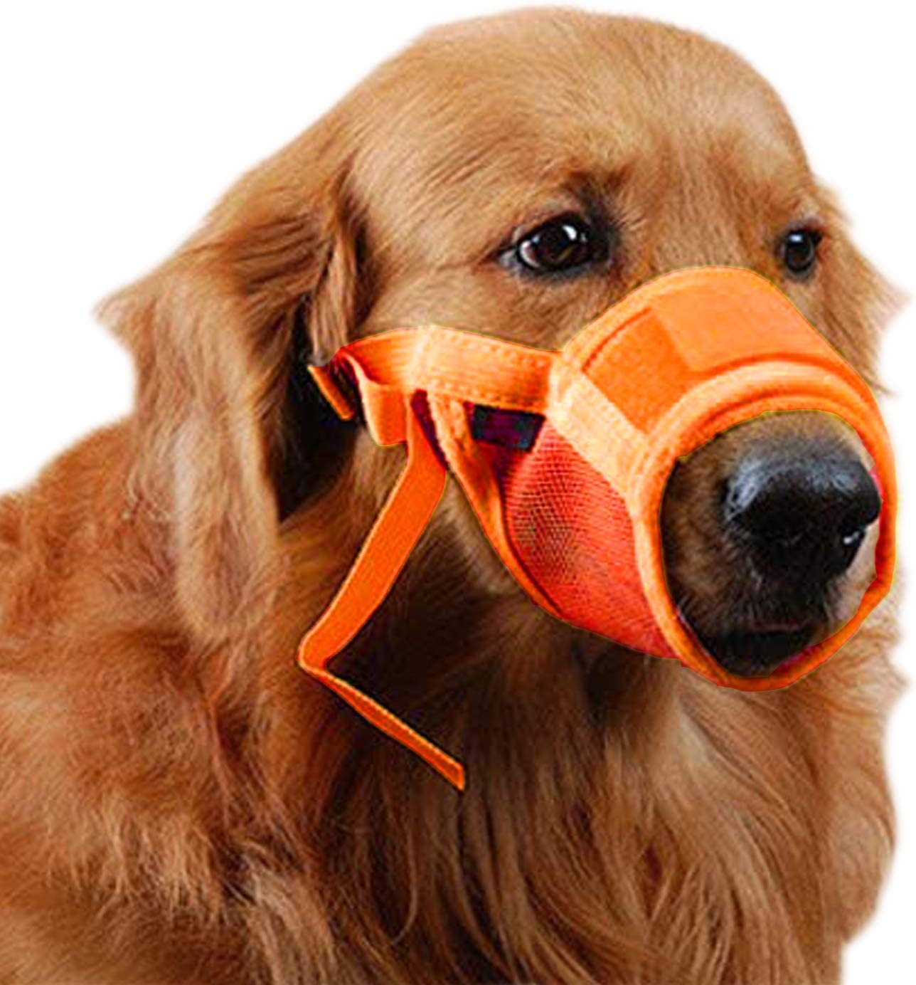 Dog Muzzle for Sale SALE% OFF Manufacturer regenerated product Barking Chewing Nylon Biting Trai Breathable Mesh