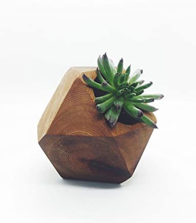 Geometric wood succulent planter made from cedar wood with a mineral oil and beeswax finish