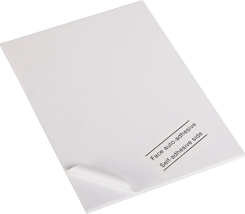 Clairefontaine 93612C 93612C 93612C Packung (mit 5 Schaumkartons, selbstklebend, 50 x 65 cm, 5 mm, ideal für Modellieren und Dekorationsarbeiten, leicht und einfach zu bearbeiten, chlorfrei) 5er Pack weiß B009N9PMAM   | Verschiedene  6f77cb