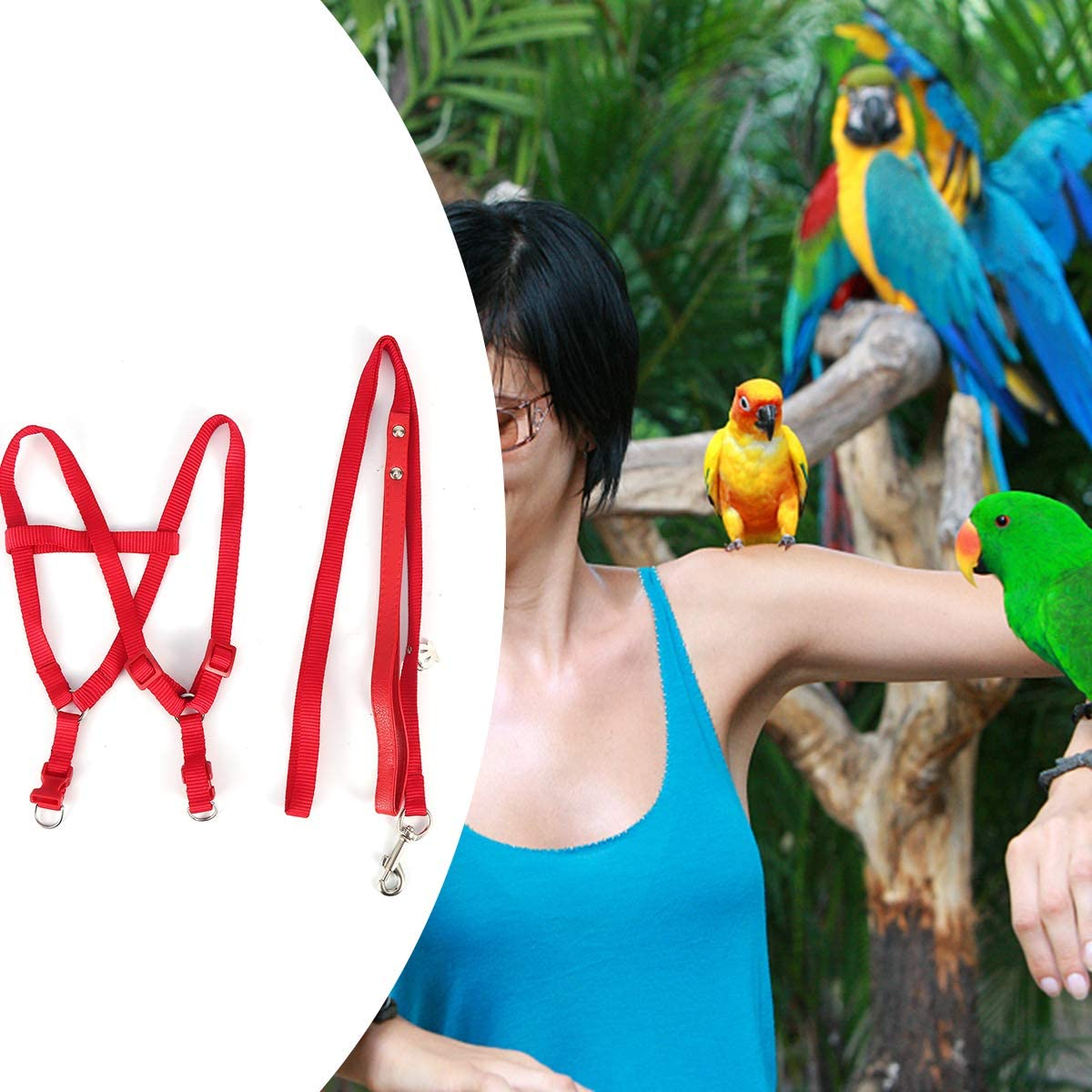 Yunnyp per cacatua guinzaglio regolabile per pappagalli Pettorina per pappagalli