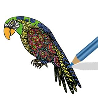 mandala colouring pages