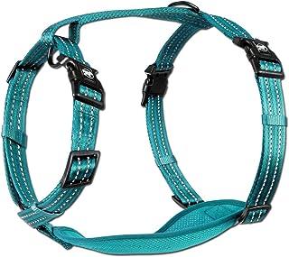 alcott Adventure Dog Harness with Reflective Stitching & Mesh Padding, Large, Blue