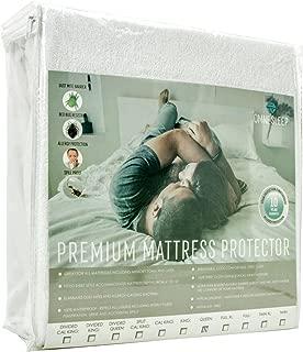 Omne Sleep Premium Mattress Protector - 100% Waterproof, Dust Mite Proof, Bed Bug Resistant - Hypoallergenic - 10 Year Warranty - Queen