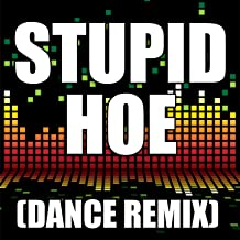 stupid hoe the song