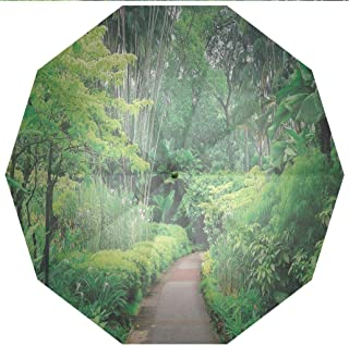 Compact Travel Umbrella UV Protection Auto Open Close Forest,Green Plants Trees in Singapore Asia Botanic Gardens Walkway Travel Windproof - Waterproof - Men - Women -Lightweight- 45 inches
