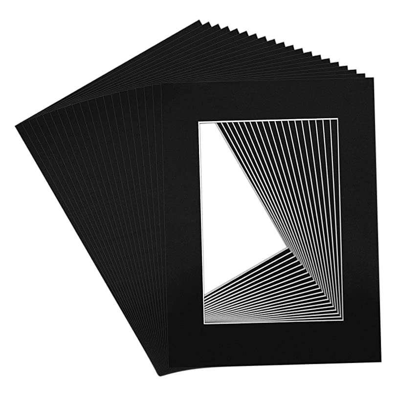 Golden State Art, Pack of 20 12x16 Black Picture Mats with White Core Bevel Cut for 8x12 Pictures