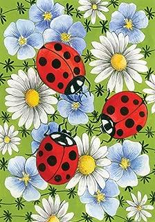 Toland Home Garden Flowers and Ladybugs 28 x 40 Inch Decorative Spring Daisy Flower Bug House Flag