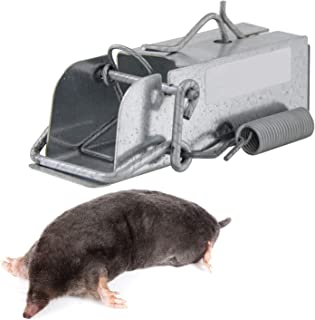 Outdoor Rodent Trap (Mini Ouell) Secure Mice, Moles Or Small rodants  Rugged, All-Weather Resistance   Built-in Animal Removal Lever   Ecofriendly Pest Control