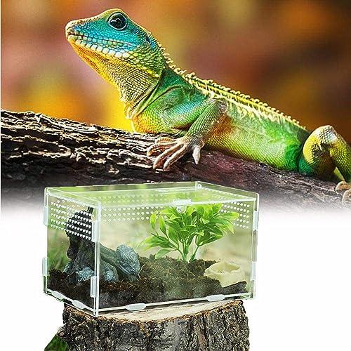 Caja de Alimentación de Insectos, 20X12X12cm Acrílico Transparente Estuche de Cría de Reptiles para Spide, Lagartija,...