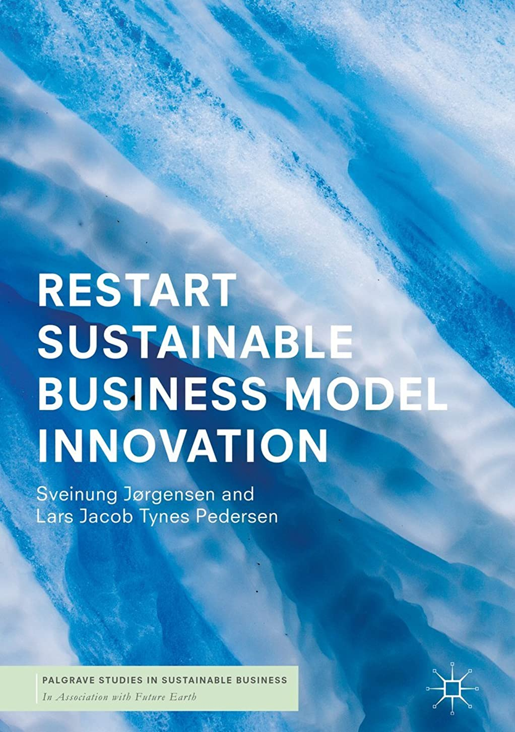 いたずらむしろ大事にするRESTART Sustainable Business Model Innovation (Palgrave Studies in Sustainable Business In Association with Future Earth) (English Edition)