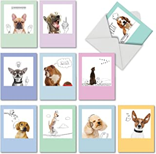 Dogs and Doodles - 10 Boxed All Occasion Dog Note Cards with Envelopes (4 x 5.12 Inch) - Funny Blank Greeting Card Set for Kids, Pet Owners - Assorted Dog and Cute Puppy Photos M6582OCBsl