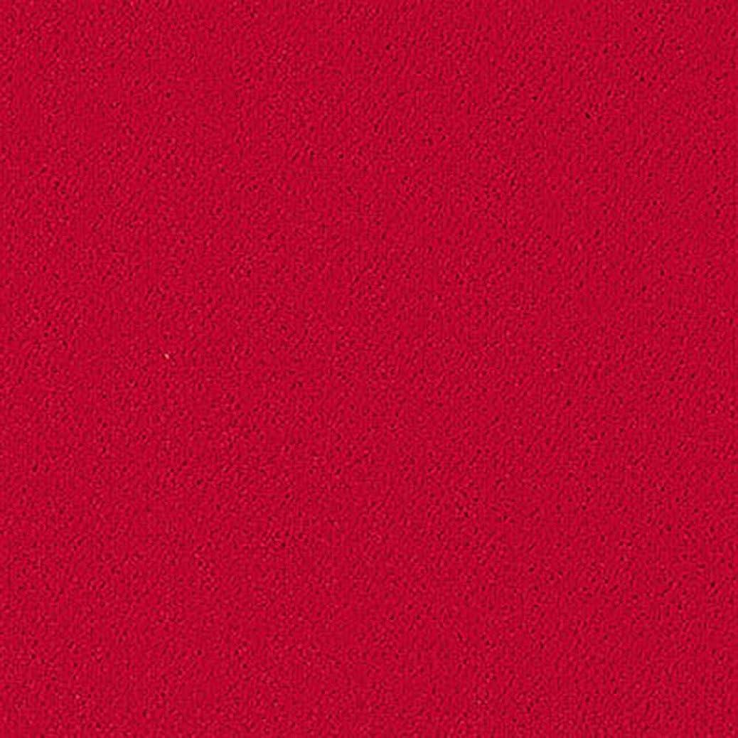 ヘルシーライトニングマニフェストサンゲツ スタイルキット ループ (KIT-10) あかいろ【10枚セット】敷くだけ?簡単 タイルカーペット 40×40cm ふかふか肌触り[手洗い?床暖OK]