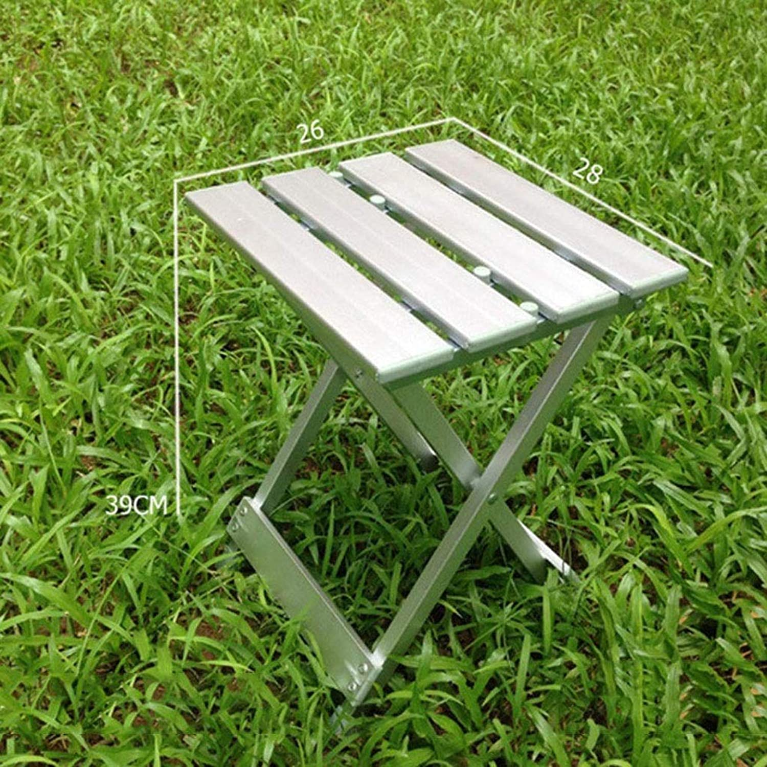 PTERS Wide Folding Step Stool, Silver (Size   39cm)