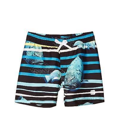 reima Swim Shorts Cancun (Toddler/Little Kids/Big Kids) (Cyan Blue) Boy