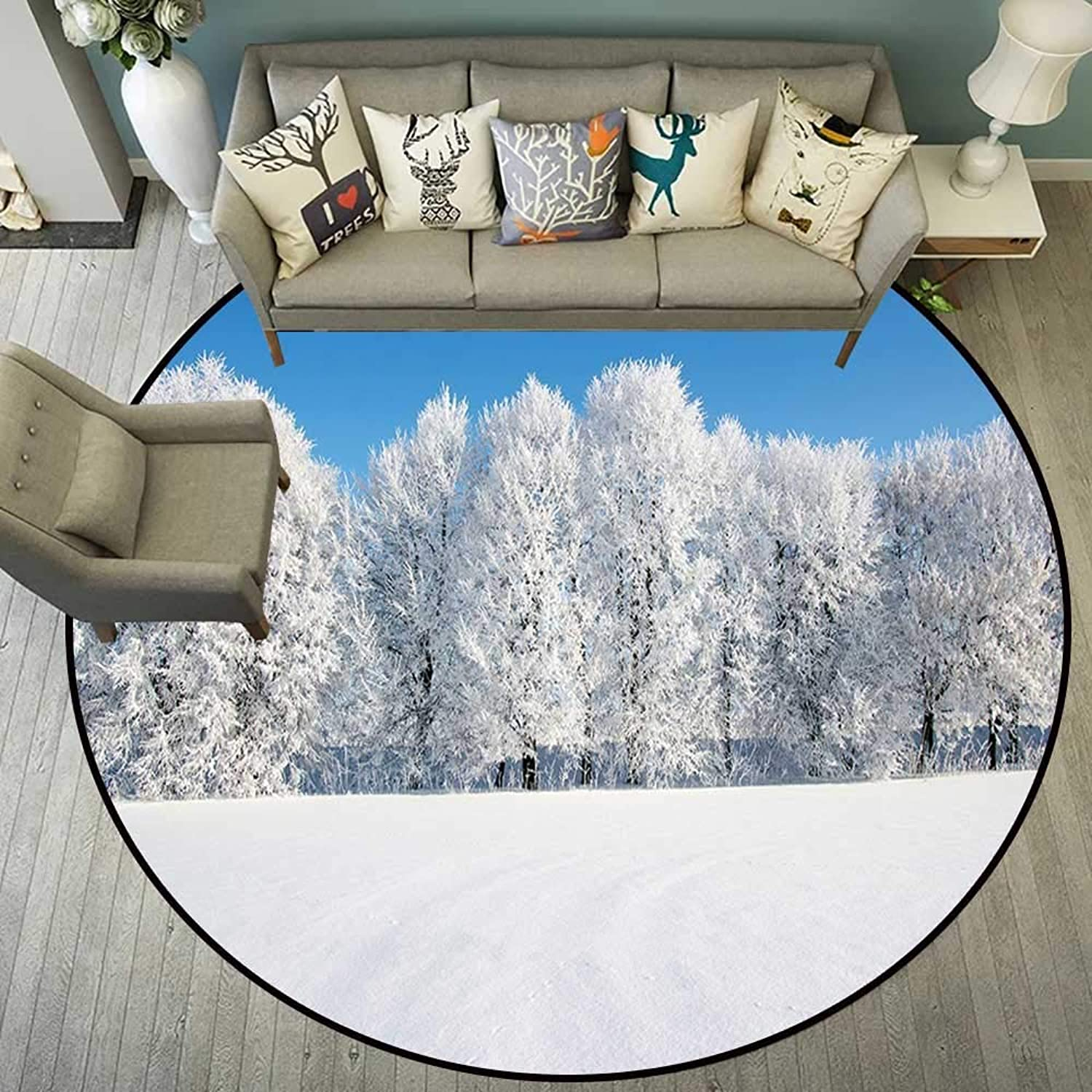 Circularity Floor mat Office Chair Round Indoor Floor mat Entrance Circle Floor mat for Office Chair Wood Floor Circle Floor mat Office Round mat for Living Room Pattern 5'7  Diameter