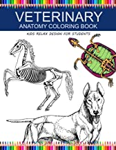 Best animal anatomy for kids Reviews