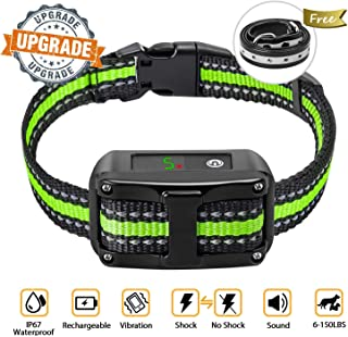 Best dog collars for labs Reviews