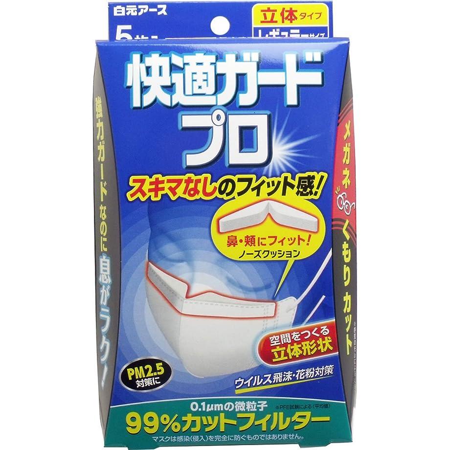 【白元アース】快適ガード プロ 立体タイプ レギュラーサイズ 5枚入