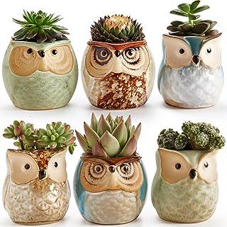 Sun-E 6 in Set 2.5 inch Owl Pot Ceramic Flowing Glaze Base Serial Set Succulent Plant Pot Cactus Plant Pot Flower Pot Cont...