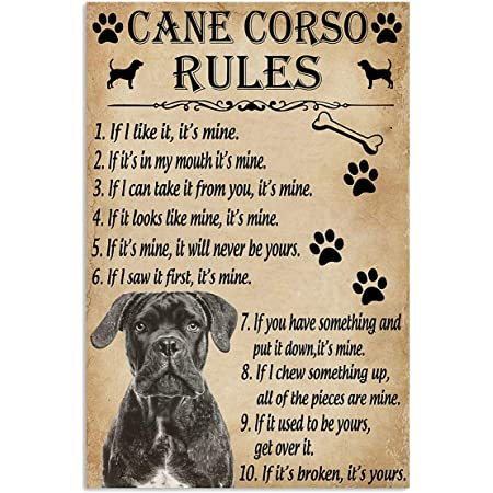 Amazon Com Jackila Funny Rules For Your Dog Cane Corso Wall Art Print Painting Home Decor Gifts For Lovers Poster Posters Prints