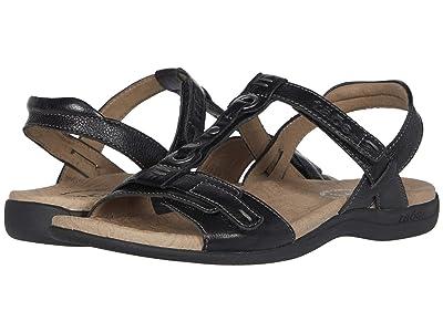 Taos Footwear Swifty (Black) Women