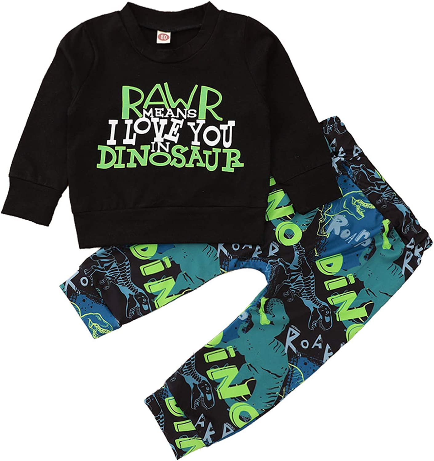 Toddler Infant Baby Boy Rawr Dinosaur Outfits Long Sleeve Top and Pant Fall Winter Clothes Set 2Pcs