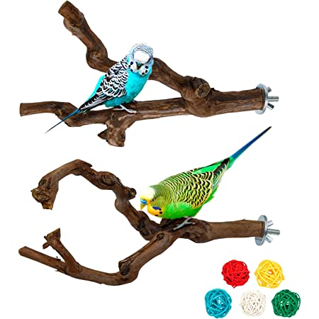 Parrot Perch Stands Birds Stand Pole Natural Wild Grape Stick Grinding Paw Climbing Standing Cage Accessories Toy Branches for Parakeet, Budgies, Lovebirds