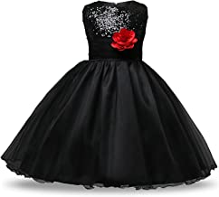 Girl's Party Dress - Flower Sequined Princess Dress Costume for Children - (4-5 Years)