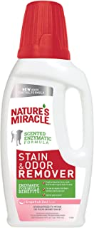 Nature's Miracle Stain and Odor Remover Dog 32 Ounces, Odor Control Formula, Grapefruit Scent Pour Bottle