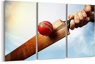 cricket art gallery