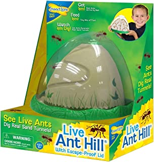 Ant Farm Viewing Habitat – Escape Proof Ant Hill Kit Includes Sand And Activity Book