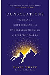 Consolations: The Solace, Nourishment and Underlying Meaning of Everyday Words Hardcover