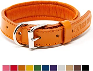 Logical Leather Padded Dog Collar - Best Full Grain Heavy Duty Genuine Leather Collars