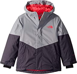 8da3bde4a The kids warm storm jacket little kids big kids, The North Face | 6pm