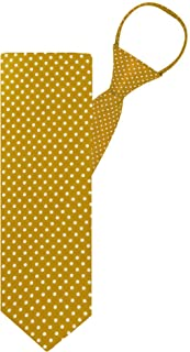 "Jacob Alexander Polka Dot Print Boys 14"" Polka Dotted Zipper Tie - Gold"