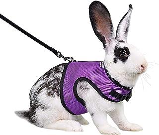 Niteangel Adjustable Soft Harness with Elastic Leash for...