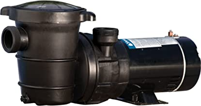 Best waterway above ground pool pump parts Reviews