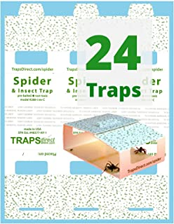 Traps Direct 24 Spider & Insect Trap