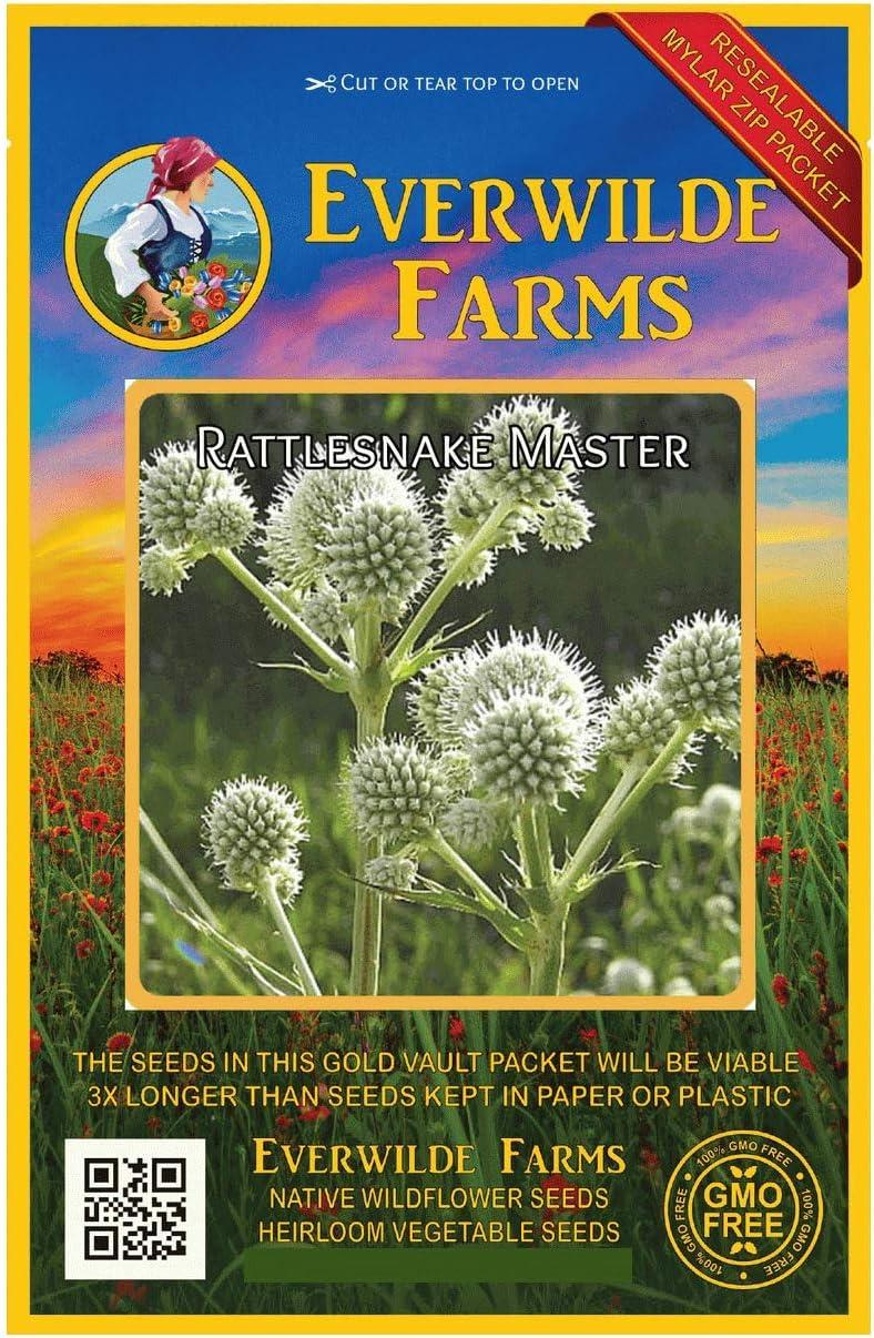 Nippon regular agency Everwilde Farms - 500 Rattlesnake Master Mail order Seeds Native Wildflower