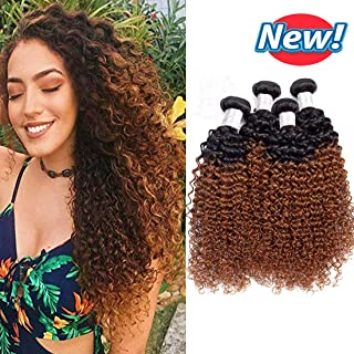 BCQueen 4 Bundles Ombre Brazilian Curly Hair Grade 7A Wet and Wavy Ombre Kinky Curly Human Hair Weave Hair Extensions T1B/30 Color(14141414)