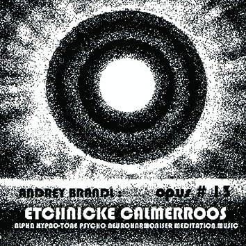 ETCHNICKE CALMERROOS / OPUS #13