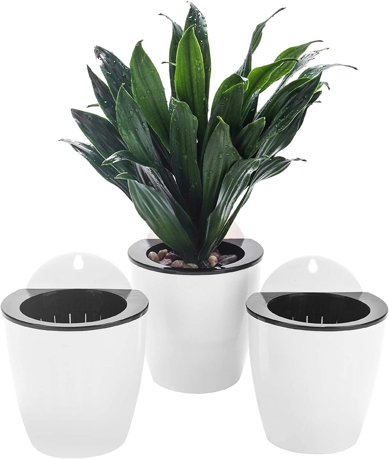 3 Pack Max 49% OFF Self Watering Wall Hanging W Garden Planter Tampa Mall Vertical Pots