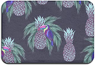 SZqingyun Indoor Doormat with Non-Skid Backing, Decorative Floor Mat Absorb Mud Rugs Shoe Scraper for Entry Kitchen Bathroom(Oucans and Pineapples On Dark Background)