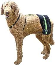 dog hip brace for hip dysplasia