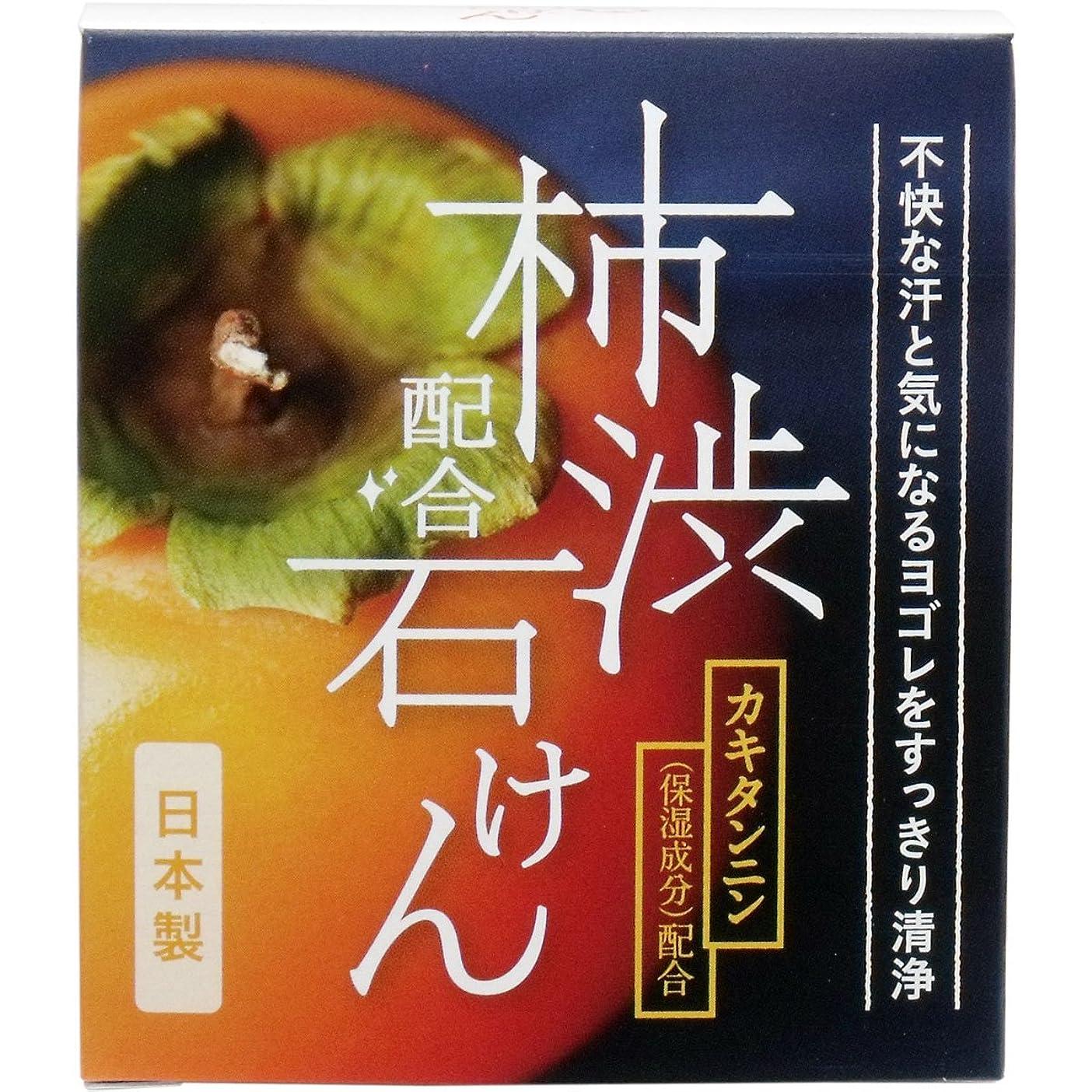免除阻害する動的W柿渋配合石けん WHY-SKA 100g