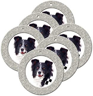 Mini Magnetic Glitter Christmas Photo Frame Ornaments for Holiday Picture Frame Gifts and Tree Decoration - 6-Pack, Round - Silver