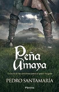 Peña Amaya (Spanish Edition)