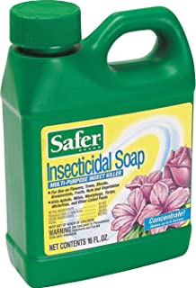 Woodstream Safer Insecticidal Soap Insect Killer