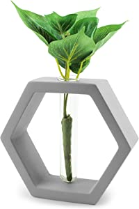 Slice of Goodness Hexagon Planter Pot - Plant Propagation Station with Glass Test Tube and Smooth Cement Holder - Modern Home Decor Terrarium Vase Stand